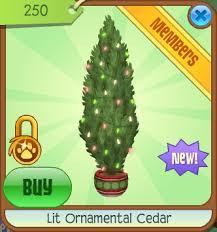lit ornamental cedar animal jam wiki fandom powered by wikia