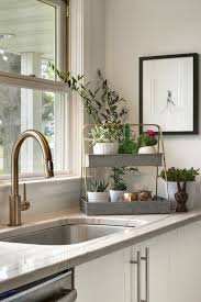 Venetian Bronze Kitchen Faucet by Sinks And Faucets Delta Brushed Nickel Kitchen Faucet Kitchen