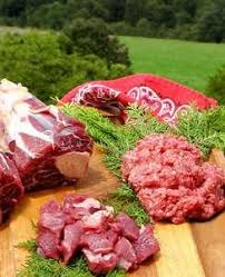 raw to go raw meat to your door for your pets needs uk