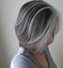 dark hair with grey streaks 17 hair highlights for every style and type of hair hottest haircuts