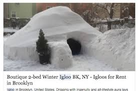 How To Build An Igloo In Your Backyard - new yorker posts brooklyn igloo on airbnb during blizzard only