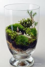 best 25 moss terrarium ideas on pinterest moss garden moss