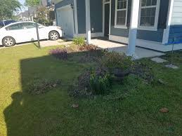 Landscaping Summerville Sc by Fresh Cuts Landscaping Home Facebook