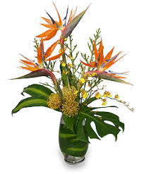 modern tropical designs floral design inc burleson tx