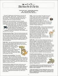 weather writing paper newsletter spring 2016 benldadoptapet picture