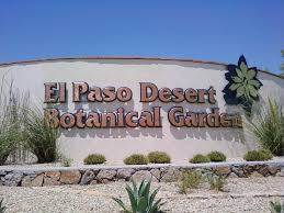 Botanical Gardens El Paso El Paso Desert Botanical Garden Image