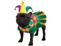 Female Dog Halloween Costumes 957 Mardi Gras Dogs Images Dog Stuff
