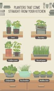 indoor edible plants fix com
