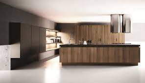 kitchen interior design ideas trendy homes pictures gallery for