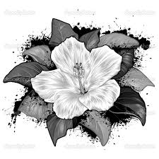 Wedding Flowers Drawing Flower Drawing 38 Photo Gallery Reference Images Fans Share