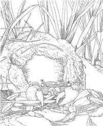 aion signia fantasy scenery treehouses