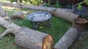 backyard tree stump sitting area youtube