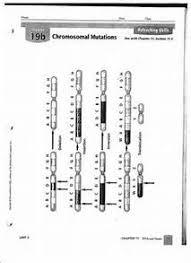 chromosome mutations worksheet chromosome mutation worksheet