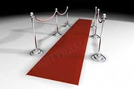 amazon com hollywood red carpet runner 15ft toys u0026 games