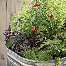 Container Vegetable Gardening Ideas 15 Stunning Container Vegetable Garden Design Ideas Tips