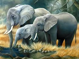 desktop cute animated pics of elephants download
