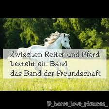 pferdesprüche images tagged with pferdesprueche on instagram