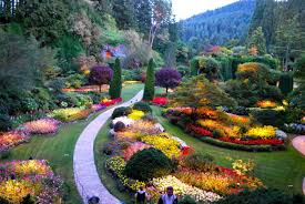 butchart gardens is one of the most beautiful gardens in the world
