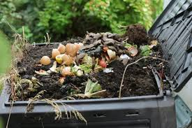 Backyard Composter Compost Vs Fertilizer Which Choice For The Best Plants