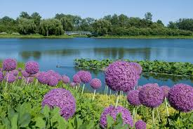 the most beautiful botanical gardens across united states photos