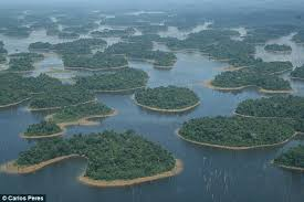 amazon basin hydropower in the amazon basin is threatening hundreds of rare
