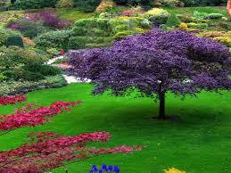 pretty flower garden ideas english garden cozy serenity rest flowers countryside calmness
