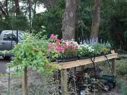 the garden u2013 roses and gargoyles gardenscapes