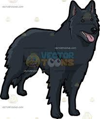 belgian shepherd temperament a lost belgian shepherd dog cartoon clipart vector toons