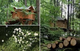 chambre d hote chapelle des bois chambre d hôtes la cabane dans les arbres à la chapelle aux bois