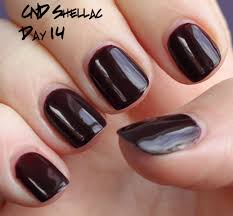 introducing cnd shellac hybrid nail color all lacquered up