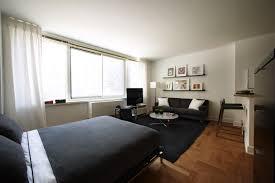 Dark Rug Futuristic Studio Apartment Furniture With Dark Grey Bed Sheet And