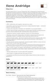 Sample Underwriter Resume by Underwriting Assistant Resume Underwriting Assistant Resume 5914