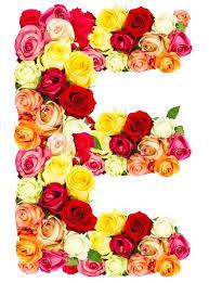 e flowers e flowers flowers ideas for review