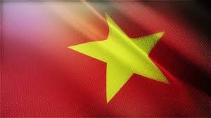 Vietnamese Freedom Flag I Made This Virtually Vietnamese Flag For Celebrating Of New Afc
