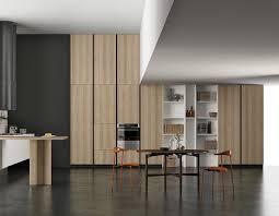 Kitchen Tall Cabinets Tall Cabinets Doimo Cucine