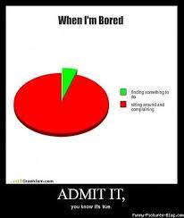 When I M Bored Meme - when i m bored piecharts pinterest meme it memes and lol