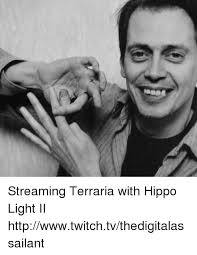 Twitch Memes - streaming terraria with hippo light ii