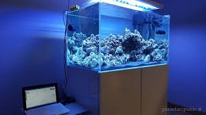 vasche acquario vasca marino