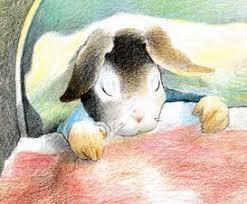 tale peter rabbit rabbit ears