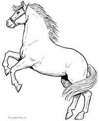 realistic horse print free coloring pages art coloring pages
