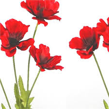 poppies flowers x2 artificial 48cm poppy flower stem decorative silk