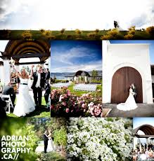 wedding arch kelowna cedar creek winery adrian creative blending the world of