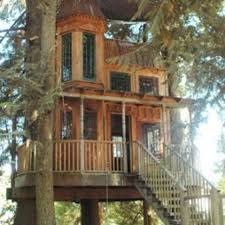Cool Tree Houses 45 Best Tree Houses Images On Pinterest Amazing Tree House