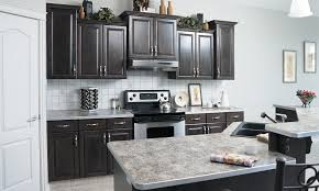 Grey Kitchen Cabinets Pictures Grey Stained Cabinets Kitchen Video And Photos Madlonsbigbear Com