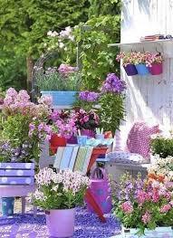 Summer Flower Garden Ideas - 224 best plant ideas for house u0026 yard images on pinterest plants