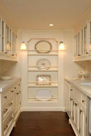 kitchen closet pantry ideas aminitasatori com best 20 butler pantry ideas on pinterest traditional bar glasses cabinets and wet barskitchen cabinet design modern kitchen
