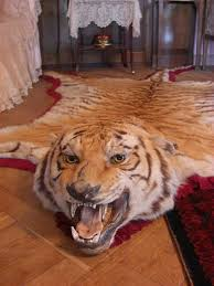 tiger rug inside the pavlovsk palace russia rm996s flickr