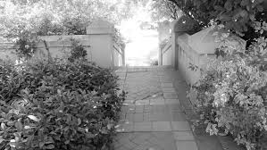 Coupon Home Decorators Black And White Retireediary Dscf0771 Loversiq