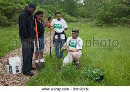 Flowers In Detroit - volunteers clean and plant flowers in neighborhood park in detroit