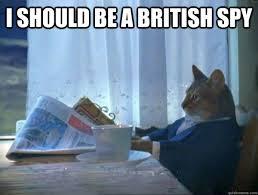 Spy Meme - i should be a british spy morning realization newspaper cat meme